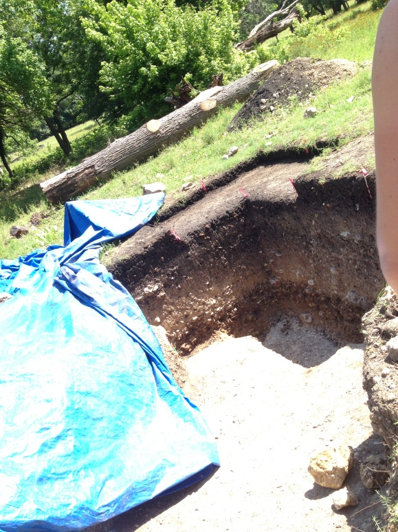This is where they found the mammoth jaw